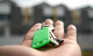Как выбрать квартиру? 8 полезные советов от дизайнера